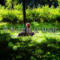 46 Melodies Of Nature — Meditation Music Zone