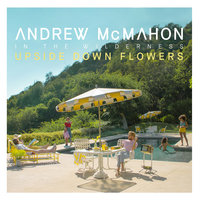 Upside Down Flowers — Andrew McMahon in the Wilderness