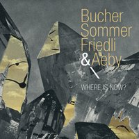 Where Is Now? — Michael Bucher, Tobias Friedli, Stefan Aeby, Patrick Sommer, BucherSommerFriedli & Aeby