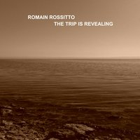 The Trip Is Revealing — Romain Rossitto