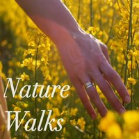 Nature Walk Sounds — сборник