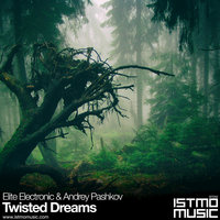 Twisted Dreams — Elite Electronic, Andrey Pashkov