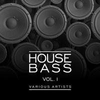 House Bass, Vol. 1 — сборник