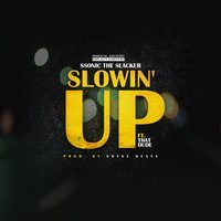 Slowin' up — That Dude, Ssonic The Slacker