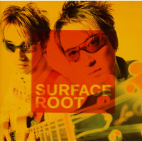 Root — Surface