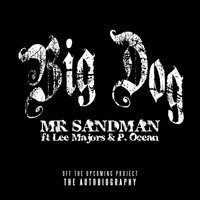 Big Dog - Single — Mr. Sandman