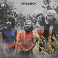 Evolution — The Sunsets, Tamam Shud, Tamam Shud, The 4 Strangers, The Sunsets, The 4 Strangers