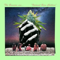 Natural Born Chillers — The Bennies
