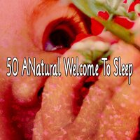 50 A Natural Welcome to Sleep — Einstein Baby Lullaby Academy