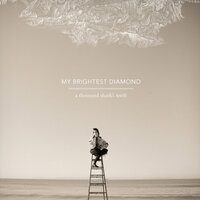 A Thousand Shark's Teeth — My Brightest Diamond