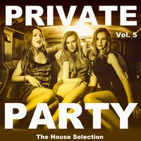 Private Party, Vol. 5 — сборник