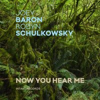 Now You Hear Me — Joey Baron, Robyn Schulkowsky