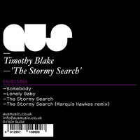 The Stormy Search — Timothy blake