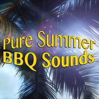 Pure Summer BBQ Sounds — сборник