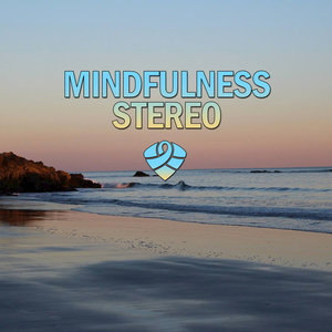 Mindfulness Stereo - The Real Life