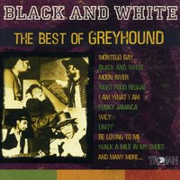 Black and White - The Best of Greyhound — сборник