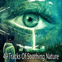 49 Tracks Of Soothing Nature — Meditation Spa