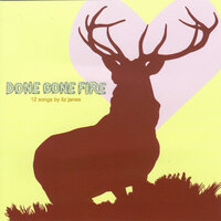 Done Gone Fire — Liz Janes
