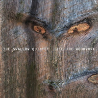 Into The Woodwork — Steve Swallow Quintet