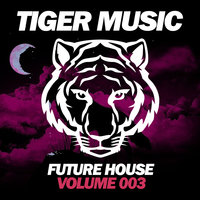 Future House, Vol. 3 — сборник