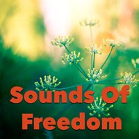 Sounds Of Freedom — сборник