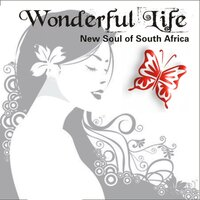 Wonderful Life - New Soul Of South Africa — сборник