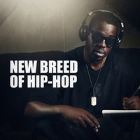 New Breed of Hip-Hop — The Hip Hop Nation, Hip Hop All-Stars, Hip Hop Audio Stars, Hip Hop All-Stars, The Hip Hop Nation, Hip Hop Audio Stars