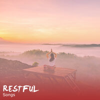 #16 Restful Songs for Stress Relieving Meditation — Meditation Music Club, Meditation and Stress Relief Therapy, Sleep Meditation Dream Catcher, Meditation Music Club, Sleep Meditation Dream Catcher, Meditation and Stress Relief Therapy