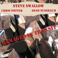Damaged In Transit — Steve Swallow, Chris Potter, Adam Nussbaum