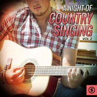 A Night of Country Singing, Vol. 2 — сборник