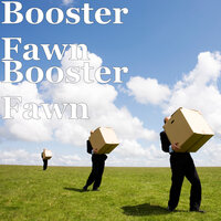 Booster Fawn — Booster Fawn