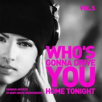 Who's Gonna Drive You Home Tonight (25 Deep-House Weekenders) Vol. 5 — сборник