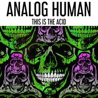 This Is The Acid — Analog Human