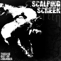 Twelve out of Chamber — Scalping Screen