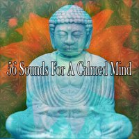 56 Sounds For A Calmed Mind — Entspannungsmusik