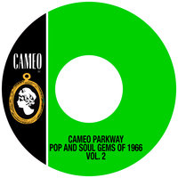 Cameo Parkway Pop And Soul Gems Of 1966 Vol. 2 — сборник