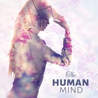 The Human Mind - Concentration, Calm Background Music for Homework, Brain Power, Relaxing Music — Mind and Body Sanctuary