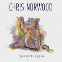 Year of the Bear — Norwood