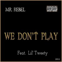 We Don't Play — Mr. Rebel