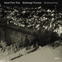 Birdwatching — Gianluigi Trovesi, Anat Fort Trio