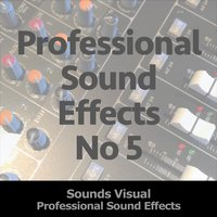 Professional Sound Effects, No. 5 — Sounds Visual
