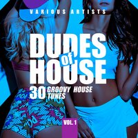 Dudes of House (30 Groovy House Tunes), Vol. 1 — сборник