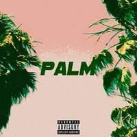 Palm — Asset, Nap The Kid, Atee