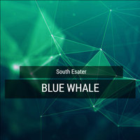 Blue Whale — South Esater