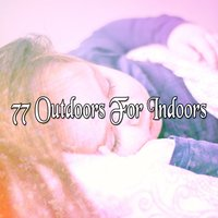 77 Outdoors For Indoors — Einstein Baby Lullaby Academy