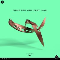 Fight For You — pluko, Max
