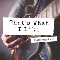 That's What I Like — Willisingz
