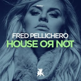 House or Not — Fred Pellichero