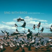 Sing with Birds — Audio Industrie