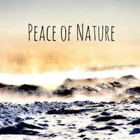 Peace of Nature — Звуки природы